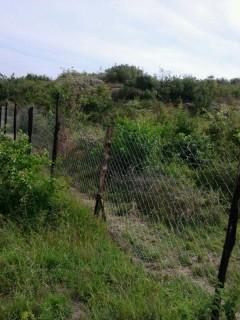 10 Acres Bondo land for sale