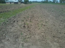 0.5 ACRES NYAMASARIA LAND FOR SALE