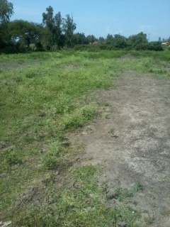 0.29ha land for sale Nyamasaria-Molem area