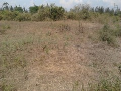 Awasi land for sale