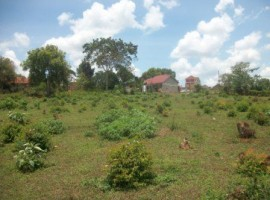 Kadiju land for sale