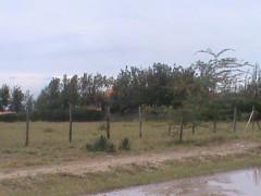 Kibos land for sale
