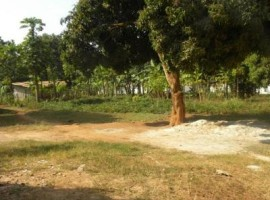 Dunga plot for sale