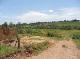 Plot in nyalunya for sale