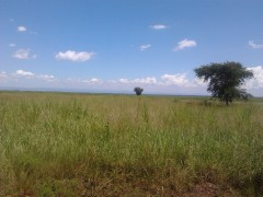 kibos land for sale