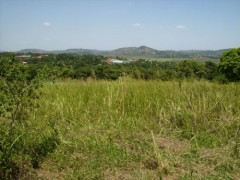 Ojola land for sale