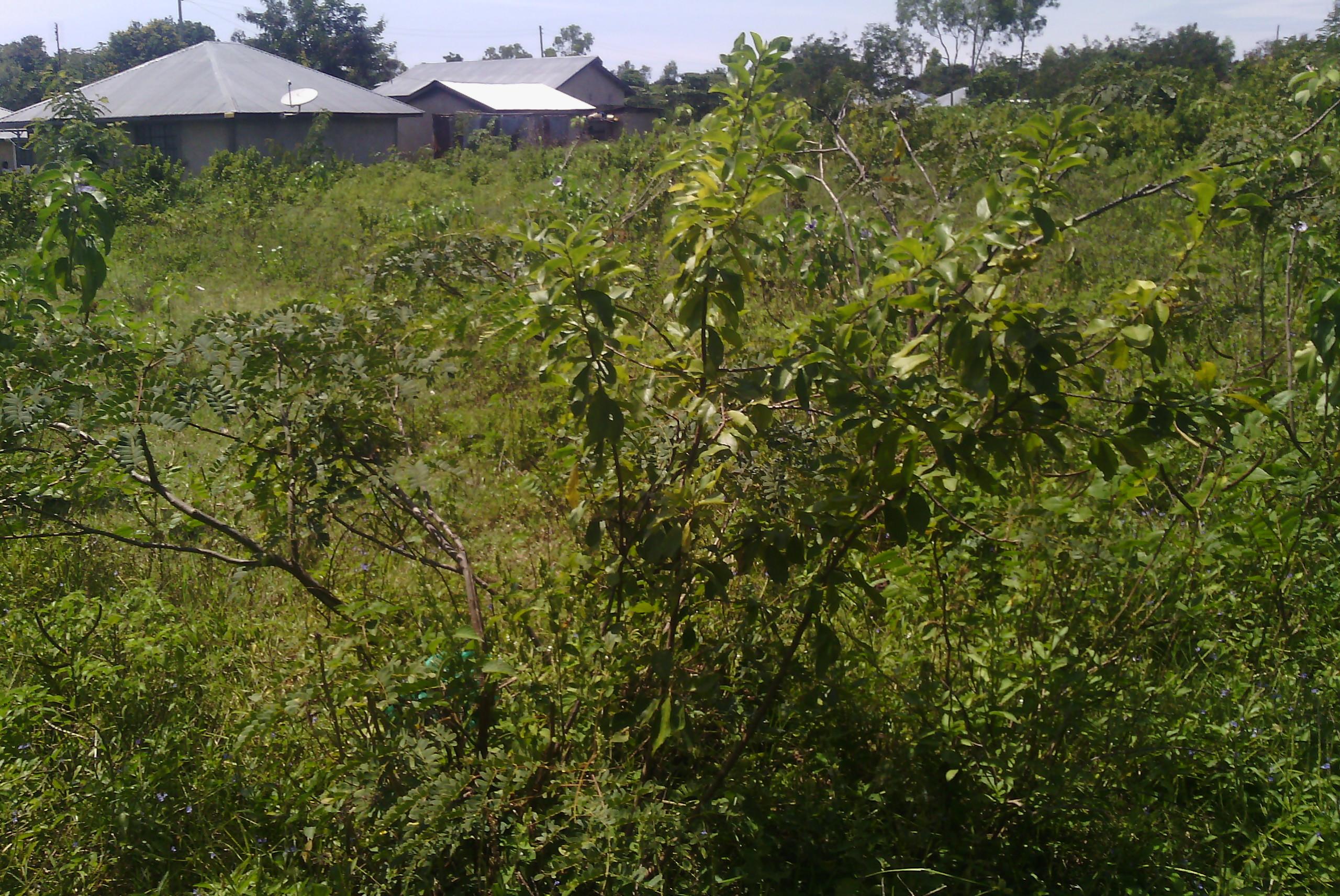 land in kisumu