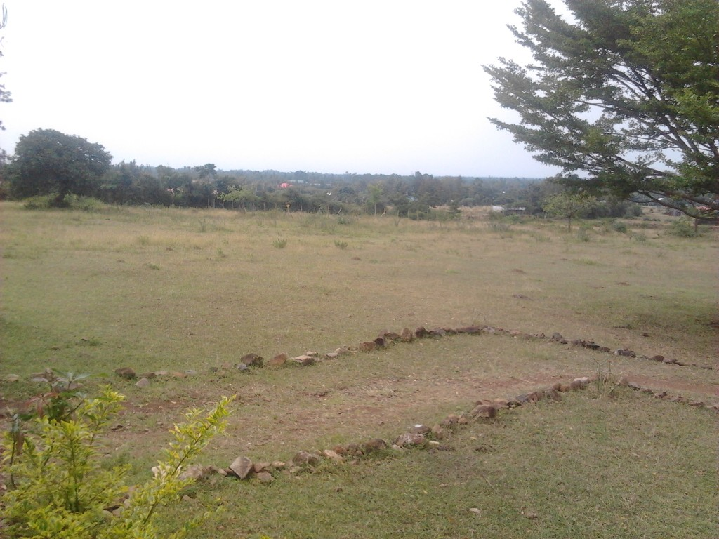 Mamboleo plot for sale