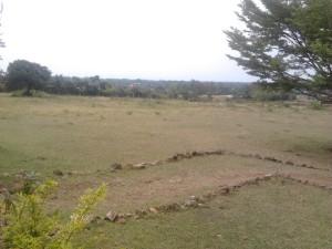 Mamboleo plot for sale