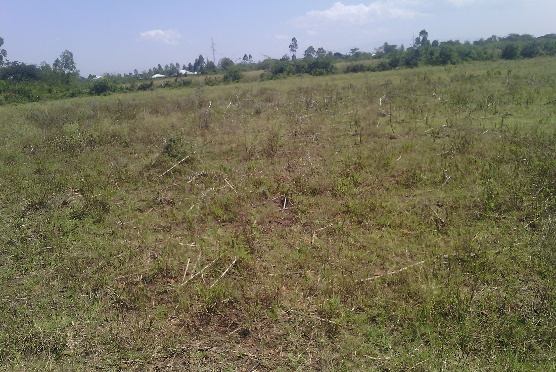 maseno land for sale