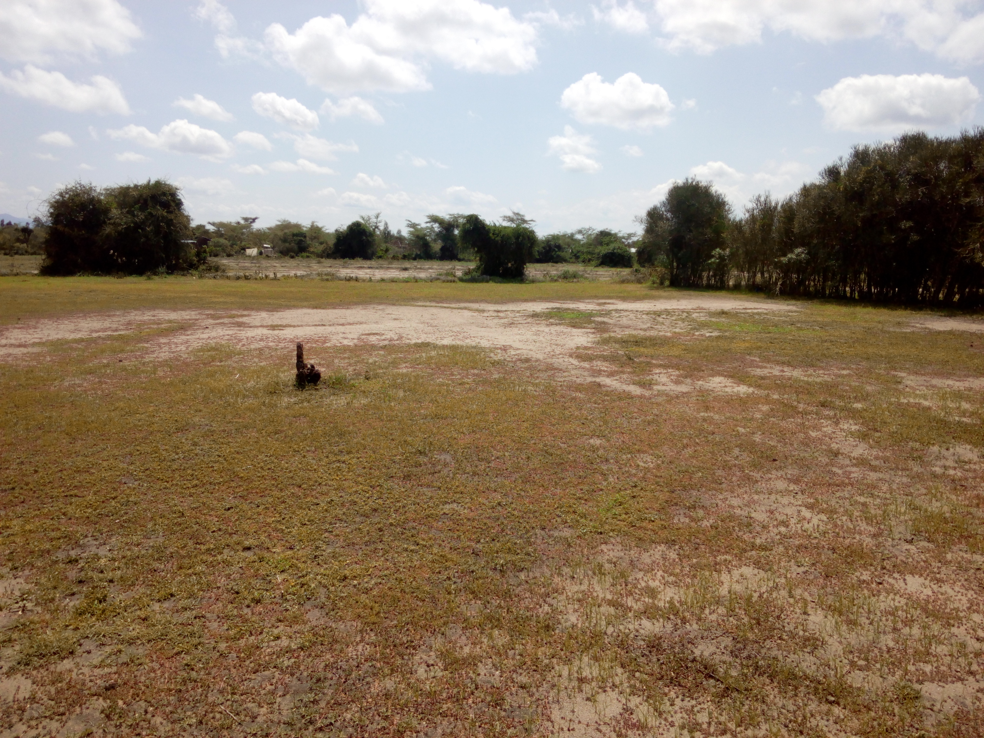 land for sale in awasi