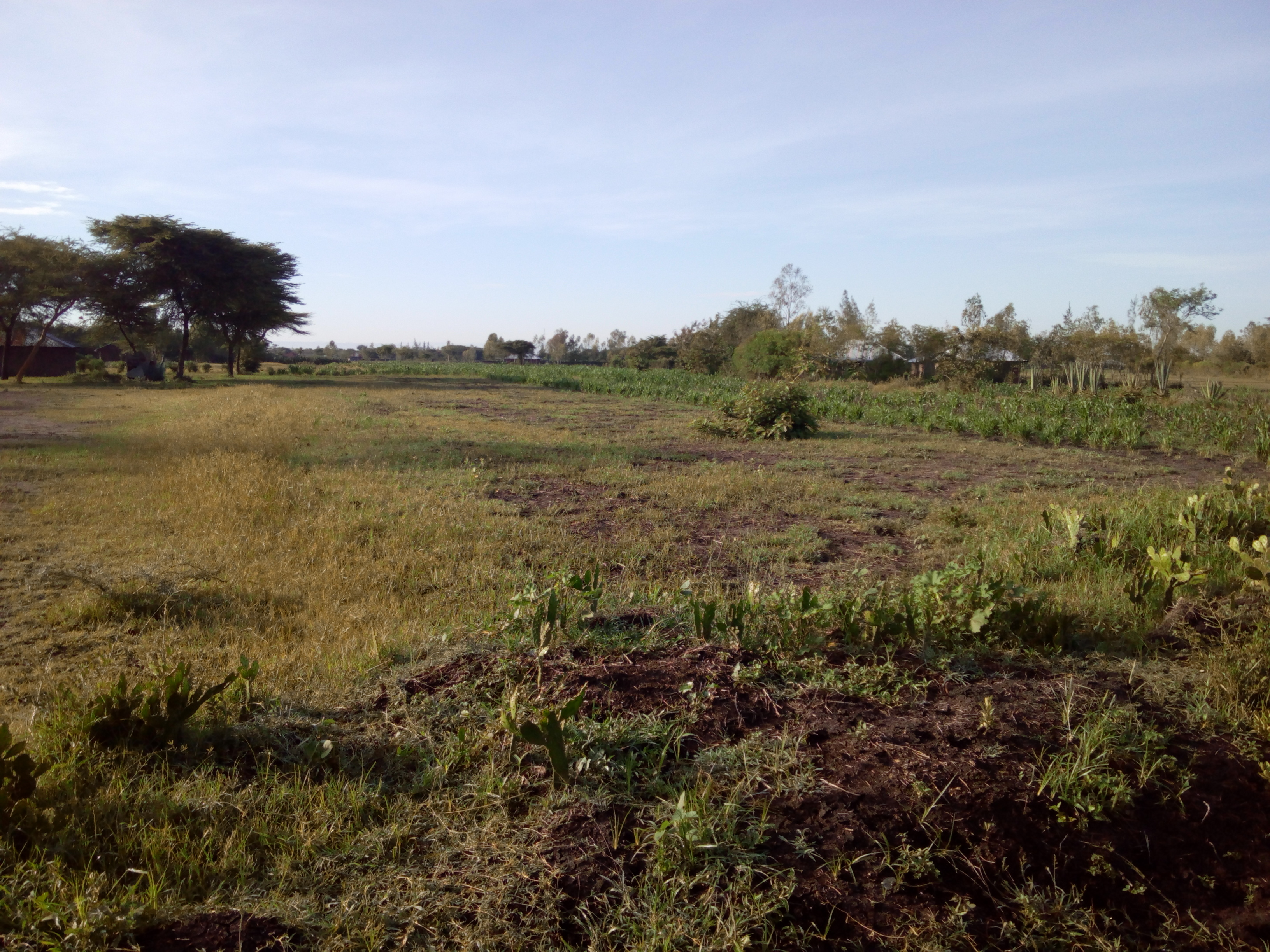 Land for sale in Kenya