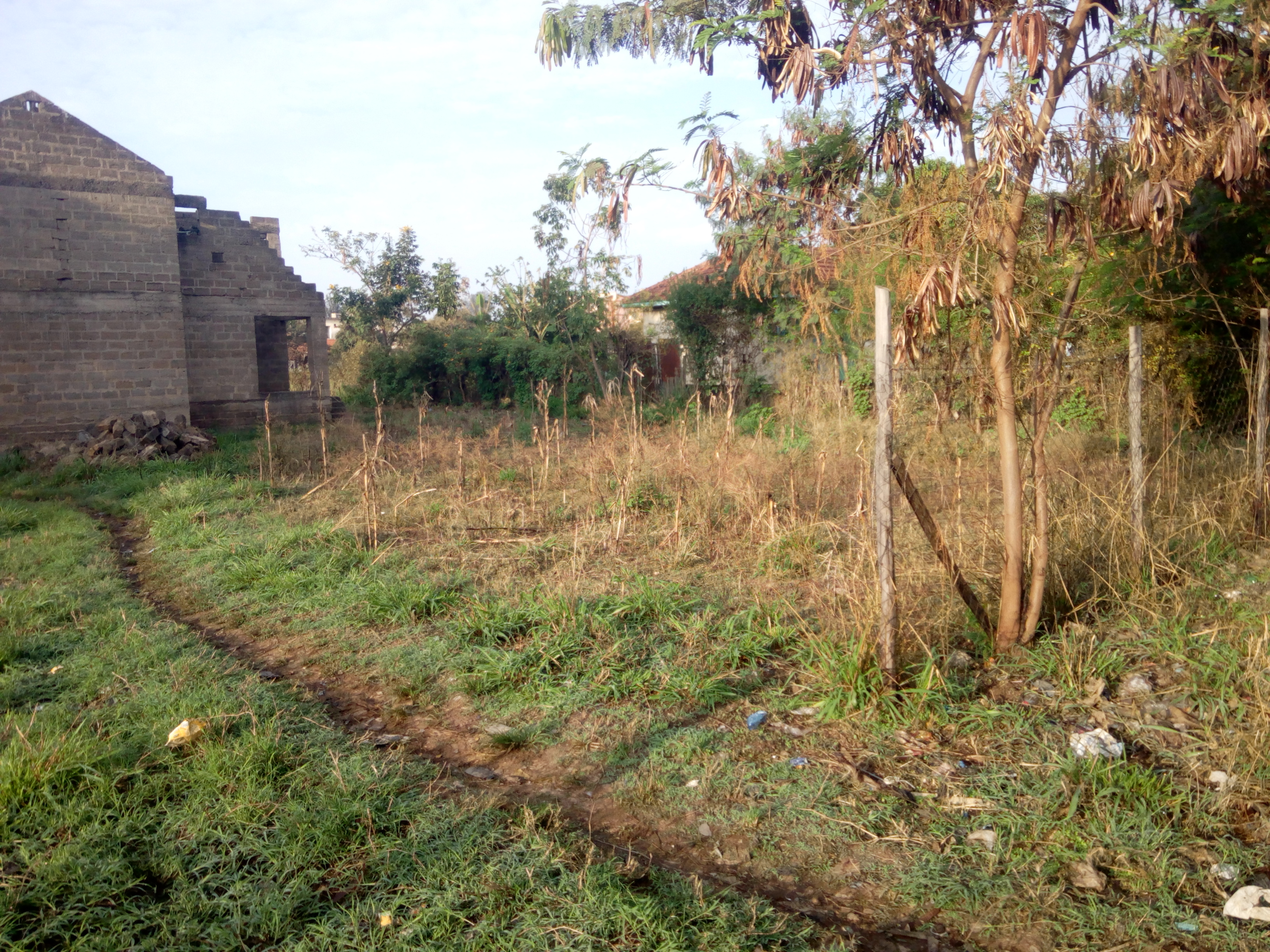 Prime plots for sale in Kisumu