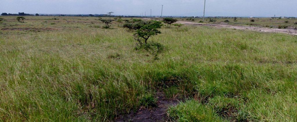 Property for sale in Kisumu