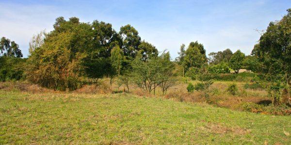 land for sale kisumu