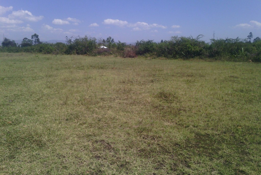 plots for sale kisumu