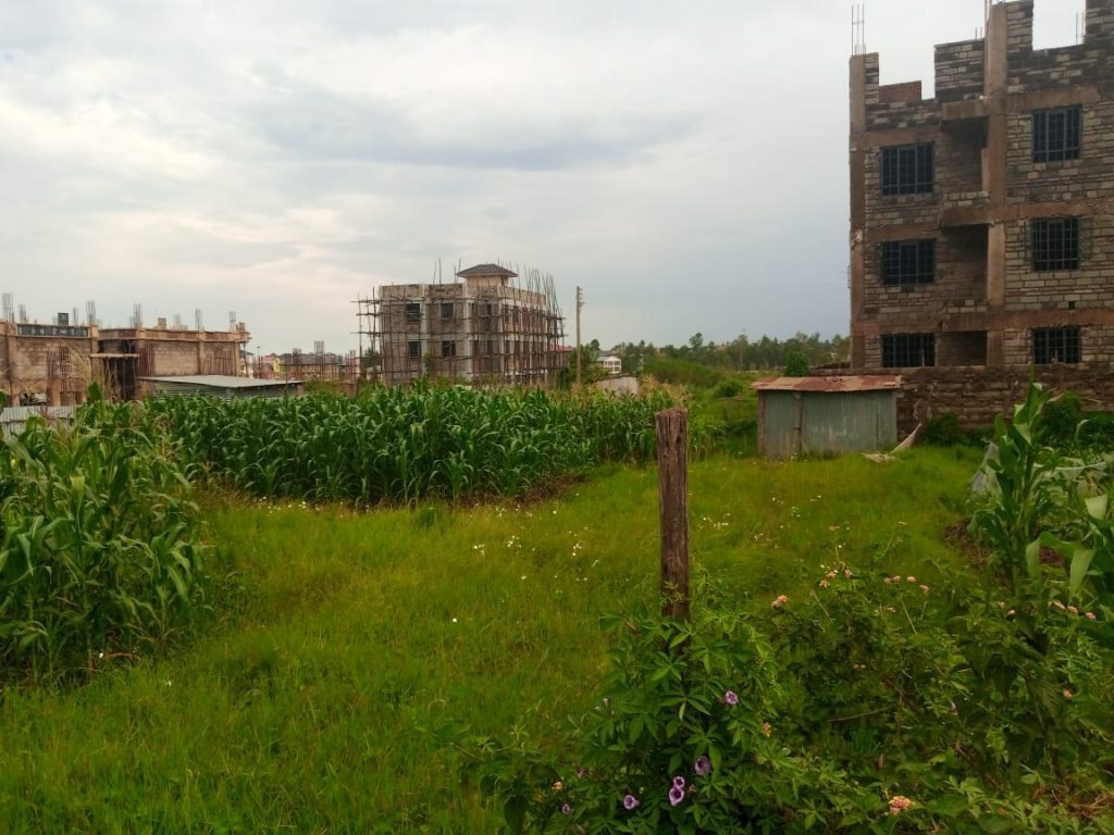 land for sale mamboleo, land for sale kisumu, kisumu land for sale, kisumu, mamboleo land, buy land kisumu, kisumu property for sale, kisumu plot for sale
